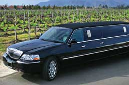 Winnery tour limo rental services
